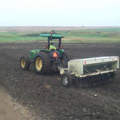 Drill Seeding
